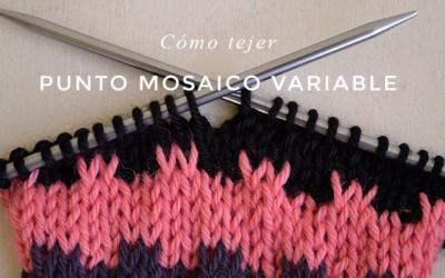 Cómo tejer Punto Mosaico variable