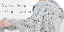 Nuevo Proyecto: el Chal Caracol