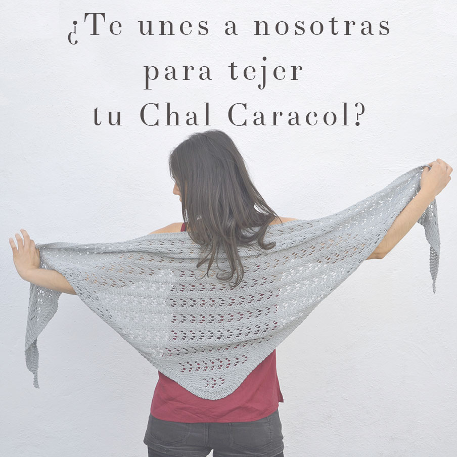 Nuevo Proyecto: el Chal Caracol | Pearl Knitter